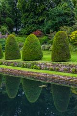 Mapperton Gardens, Clipped topiary line a fishpond