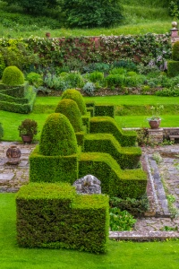 Topiary in the Ialianate garden