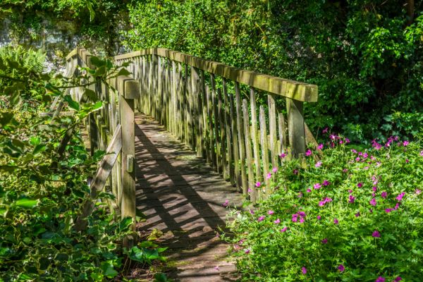 Morland House Gardens photo, A shaded footbridge across the beck