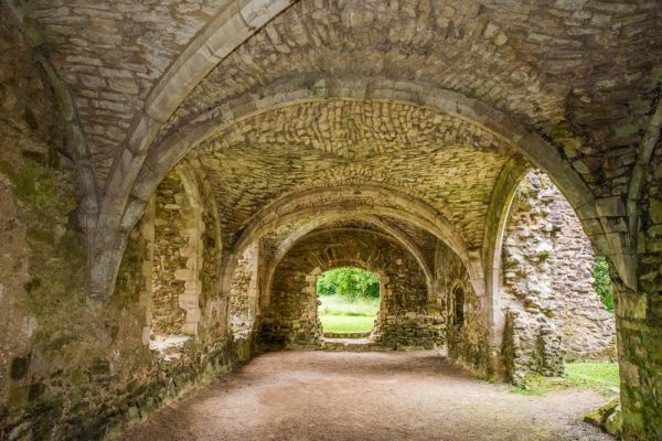 Netley Abbey photo, The undercroft of the Abbot's Lodging