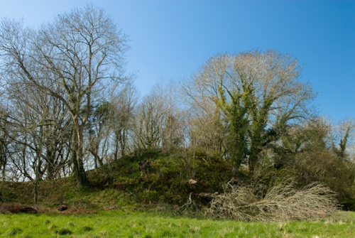 Nevern Castle motte