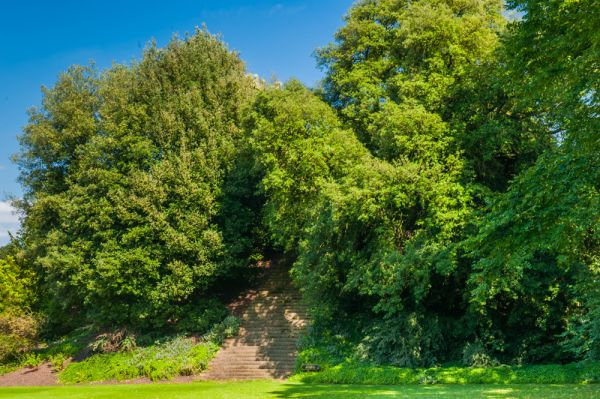 New College photo, The Elizabethan viewing mound in the college garden