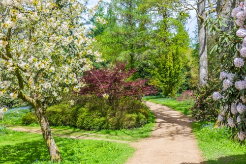 Ramster Hall Gardens in April
