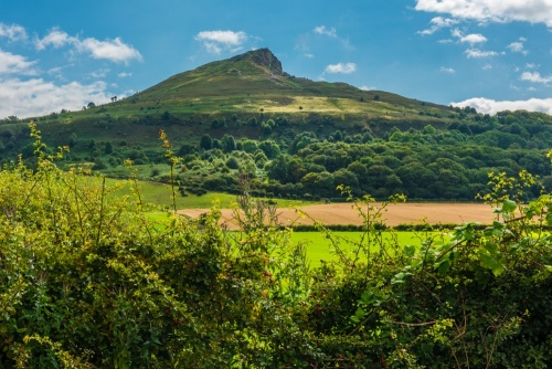 Roseberry Topping from Newton-under-Roseberry