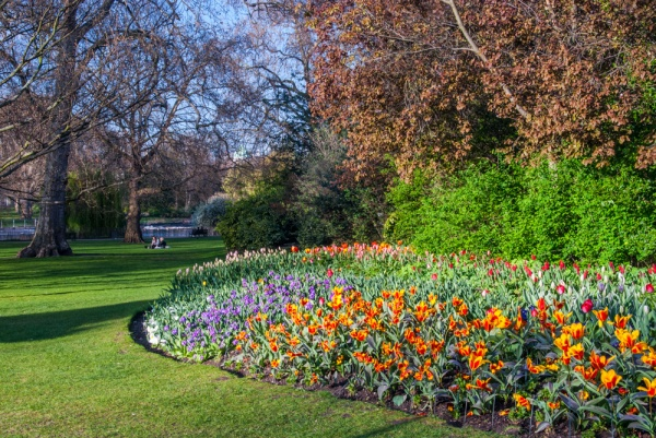 Formal flower beds in spring