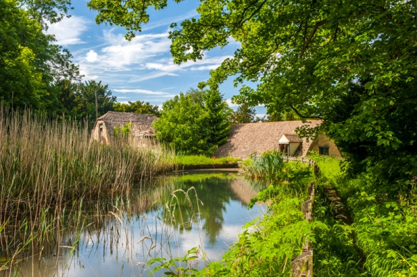 Stanway Watermill mill pond