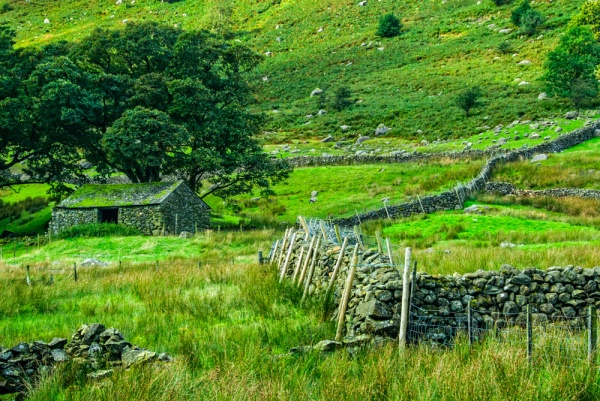 A stone wall and barn at Steel End