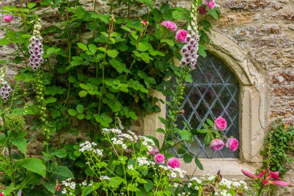 Stock Gaylard House photo, Flowers around the medieval dovecote