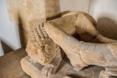 Lion at the foot of the de Waleys effigy
