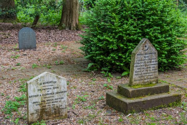 Thornham Walks photo, The Pet Cemetery