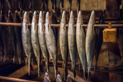 Time and Tide Museum, Great Yarmouth, (Models of) Herring fish curing