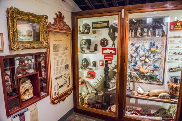 Time and Tide Museum, Great Yarmouth photo, An 18th century Cabinet of Curiosities