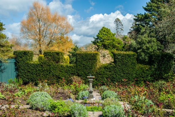 Upton Castle Gardens In Spring