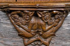 Misericords of the World