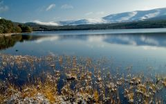 Cairngorms Travel Tips