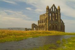 Whitby Abbey Victorian Gothic Nights