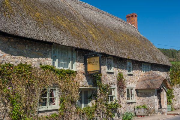 A Thatched Inn In Axmouth, Devon
