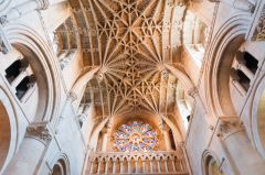 The college chapel vaulting