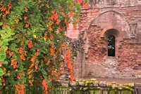 Dryburgh Abbey, near Kelso, Scottish Borders