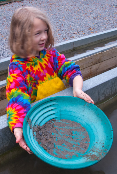 <b>Panning for gold at Dolaucothi</b><br>(our kids loved it!)