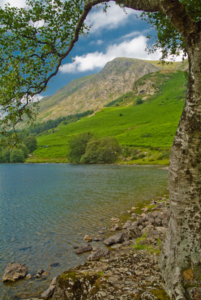 Whiteless Pike, Buttermere, Lake District