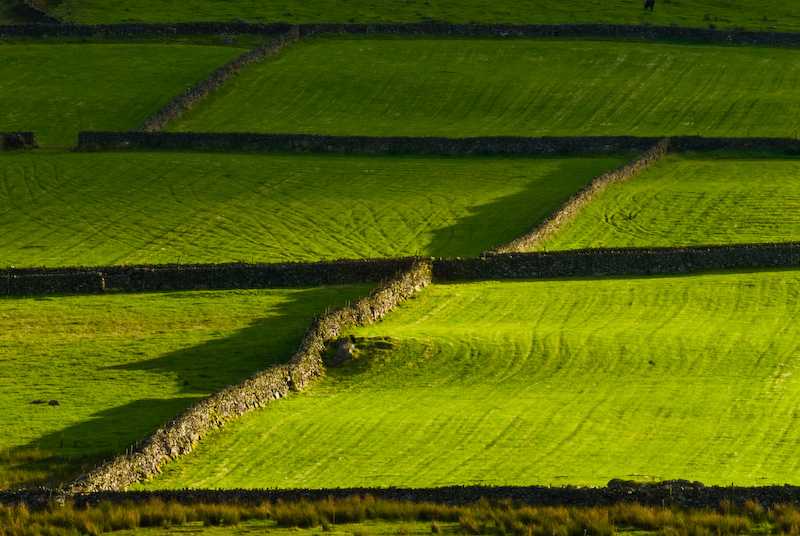 Stone walls and fields, Birker Fell, Lake District