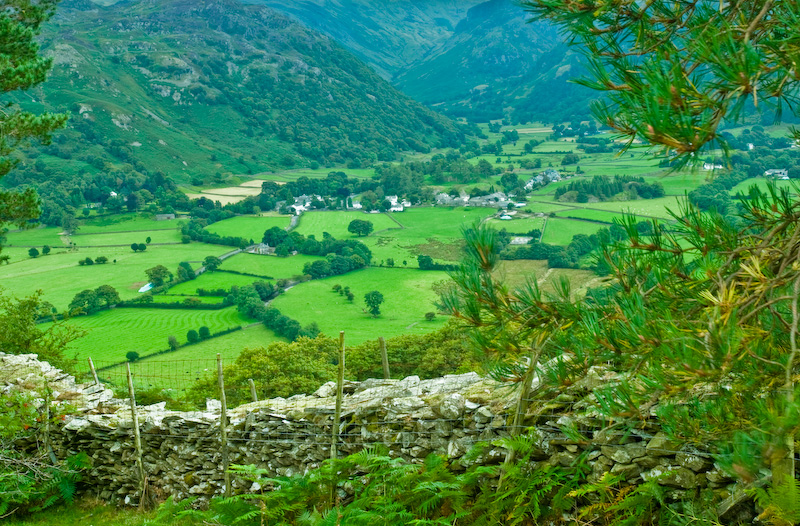 Castle Crag and Borrowdale