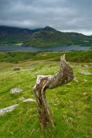 Overlooking Crummock Water, Lake District