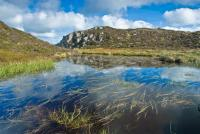 Mountain tarn, Fleetwith Pike, Lake District