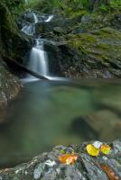 Waterfall at Seatoller, Borrowdale