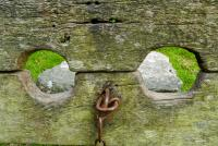 Medieval Stocks, Belstone