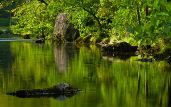 River Derwent, Borrowdale