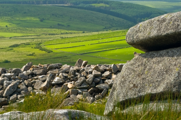 The Cheesewring, Bodmin Moor