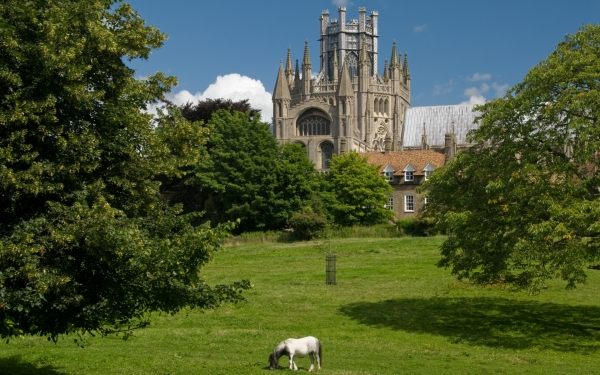 Ely Cathedral landscape