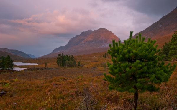 Glen Torridon dawn