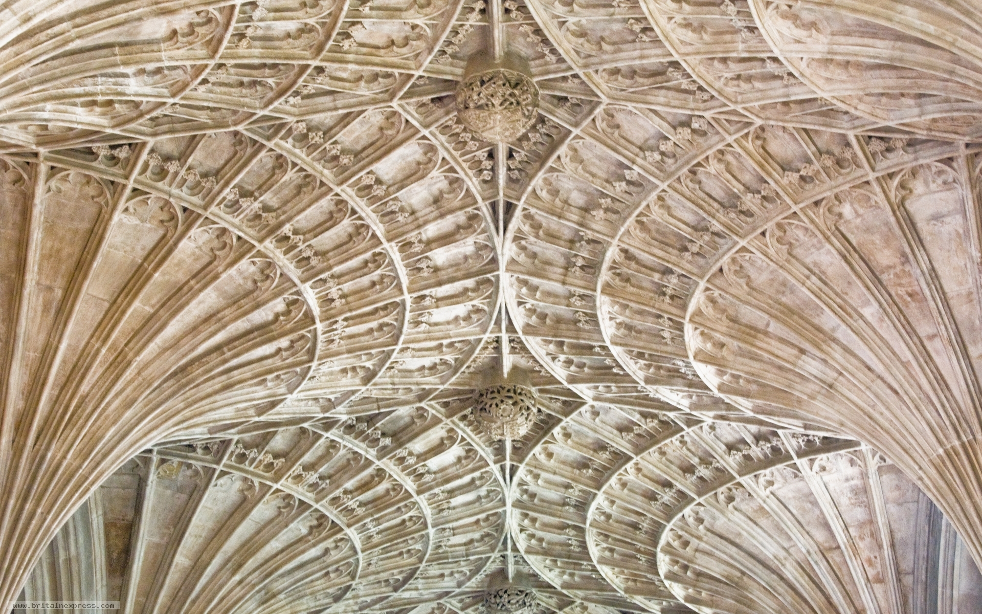 Photo Of Ely Cathedral Vaulting