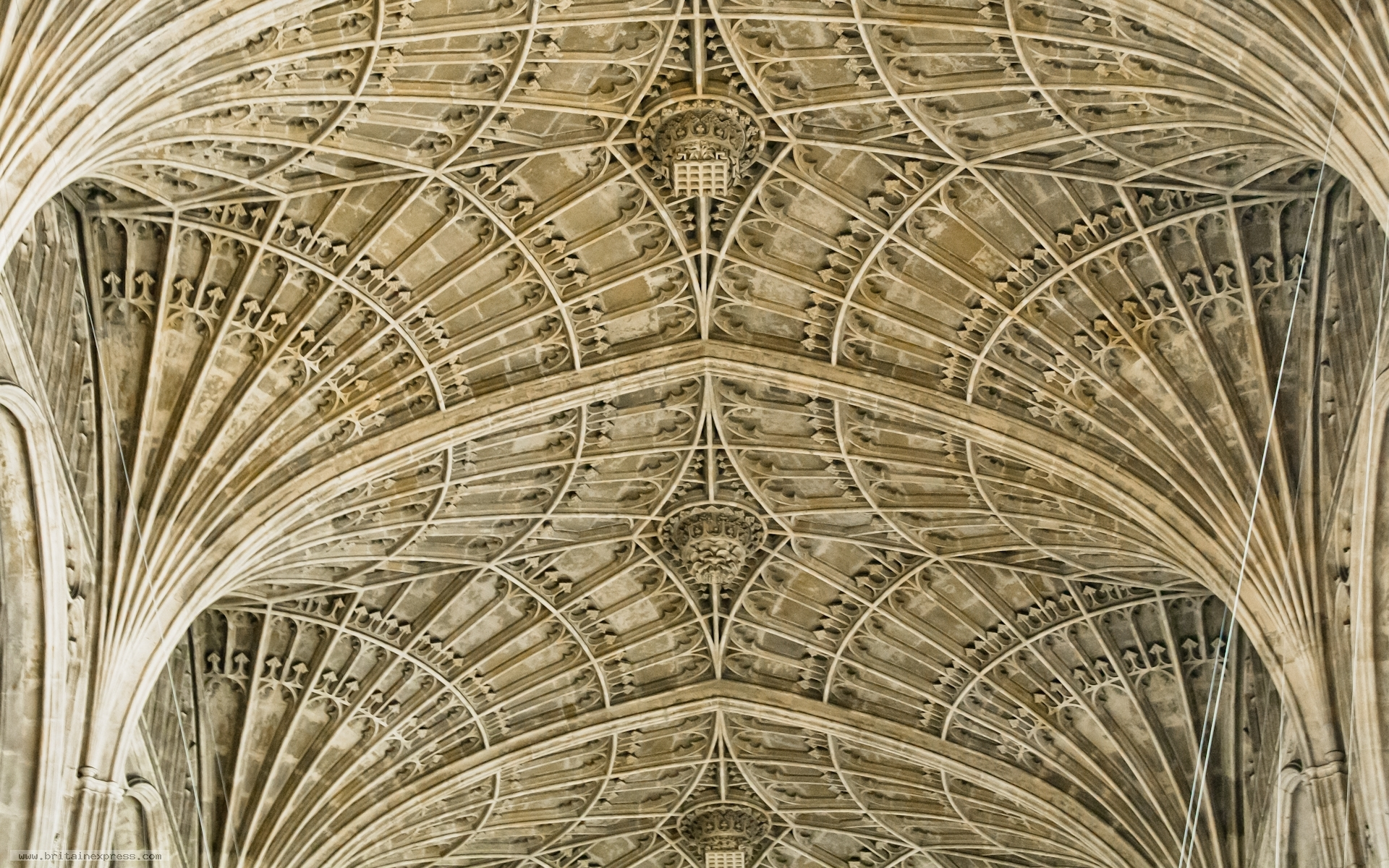 photo of perpendicular vaulting kings college chapel